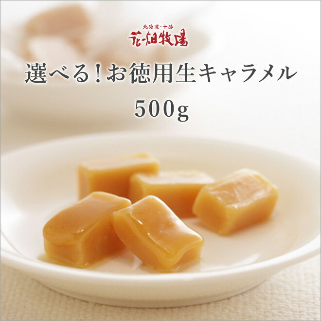 ◆楽天イーグルス感謝祭◆花畑牧場 選べる! お徳用生キャラメル500g 北海道 お土産 セール
