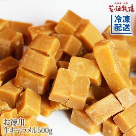 花畑牧場 お徳用生キャラメル500g【冷凍配送】