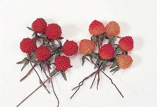 即日 大地農園/野イチゴ 12本 オレンジ/23020-350《 花資材・道具 フラワーピック フルーツピック 》