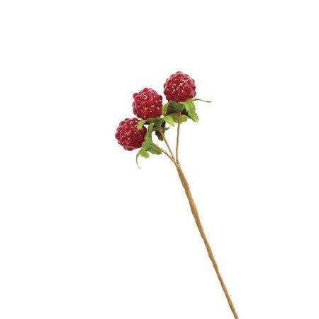 大地農園/野イチゴ・ミニ 6本 ワイン/23021-480【01】【取寄】《 花資材・道具 フラワーピック フルーツピック 》