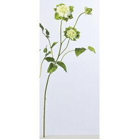 【造花】アスカ/クレマチス×3 ホワイトグリ−ン/A-32726-052【01】【01】【取寄】《 造花(アーティフィシャルフラワー) 造花 花材「か行」 クレマチス 》