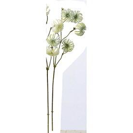 【造花】アスカ/クレマチスシード グリ−ン/A-47702-051A【01】【01】【取寄】《 造花(アーティフィシャルフラワー) 造花 花材「か行」 クレマチス 》