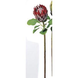 【造花】アスカ/プロテア レッド/A-32746-002【01】【01】【取寄】《 造花(アーティフィシャルフラワー) 造花葉物、フェイクグリーン 多肉植物 》