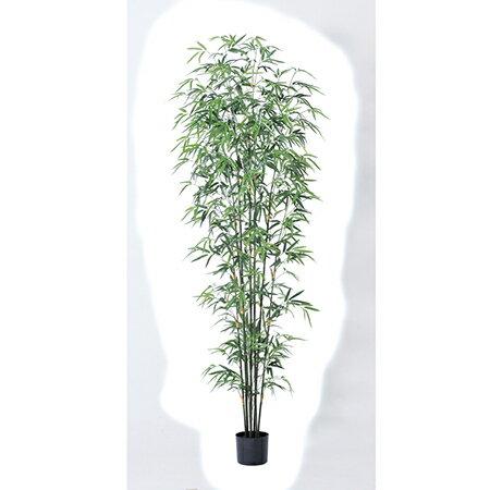 【人工観葉植物】アスカ/バンブーツリー (ポット付) グリ−ン/A-50865-051A【01】【01】【取寄】《 造花(人工観葉植物) 人工観葉植物「は行」 バンブー 》