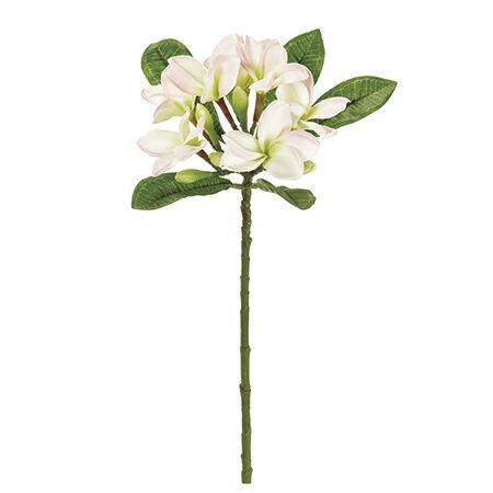 【造花】MAGIQ(東京堂)/パルティプルメリア #2 CR/PK /FM008264-002【01】【01】【取寄】《 造花(アーティフィシャルフラワー) 造花 花材「は行」 プルメリア 》