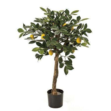 【人工観葉植物】MAGIQ(東京堂)/レモンの木ポット GR/YL /FG001950【01】【01】【取寄】《 造花(人工観葉植物) 人工観葉植物「ら行」 その他「ら行」人工観葉植物 》