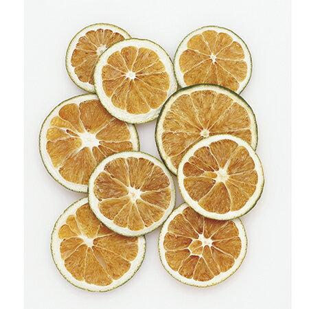 即日 【ドライ】コアトレーディング/オレンジスライス Nグリーン 約50g/19068《 ドライフラワー ドライ実物&フルーツ フルーツ、香りのアイテム 》