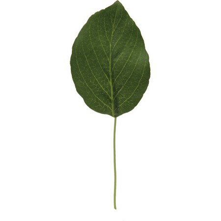 大特価◎【造花】YDM/レモンリーフピック×6 グリーン/FG4687-GR《造花(アーティフィシャルフラワー) 造花葉物 レモンリーフ》