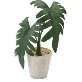 【人工観葉植物】YDM/ミニクッカバラポット グリーン/GLA1298-GR【01】【取寄】