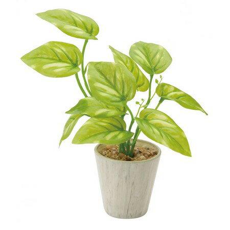 【人工観葉植物】YDM/ミニポトスポット グリーン/GLA1301-GR【01】【取寄】《 造花(人工観葉植物) 人工観葉植物「は行」 ポトス 》