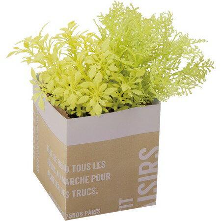 【人工観葉植物】YDM/グリーンミックスペーパーポット イエローグリーン/GLA1331-YGR【01】【取寄】《 造花(人工観葉植物) 人工観葉植物「か行」 カジュアルポット 》