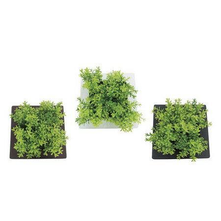 松野ホビー/グリーンフレームA/TF-979【01】【取寄】[6個]《 造花(人工観葉植物) 人工観葉植物「か行」 カジュアルポット 》