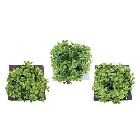松野ホビー/グリーンフレームB/TF-980【01】【取寄】[6個]《 造花(人工観葉植物) 人工観葉植物「か行」 カジュアルポット 》