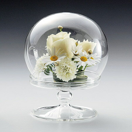 LEO/T−254  台付ドームL/T-254【01】【01】【取寄】《 花器、リース 花器・花瓶 ガラス花器 》