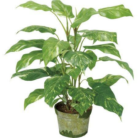 即日 大特価◎【造花】YDM/ポトスポット 50cm(poppy-GLA1150)《 造花(人工観葉植物) 人工観葉植物「は行」 ポトス 》