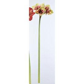【造花】アスカ/アマリリス×3 バ-ガンディグリ-ン/A-32916-015G【01】【01】【取寄】《 造花(アーティフィシャルフラワー) 造花 花材「あ行」 アマリリス 》