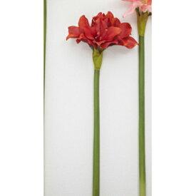 【造花】ボブクラフト/Amaryllis アマリリス・S/13009R【01】【取寄】[3本]《 造花(アーティフィシャルフラワー) 造花 花材「あ行」 アマリリス 》