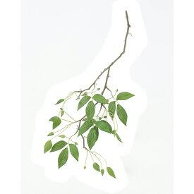 【造花】アスカ/クレマチスリーフ つぼみ×18 グリーン/A-42568-051A【01】【01】【取寄】《 造花(アーティフィシャルフラワー) 造花 花材「か行」 クレマチス 》