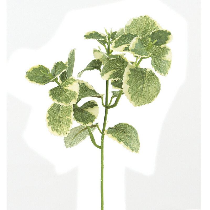 【造花】アスカ/オレガノ クリームグリーン/A-42586-053A【01】【取寄】《 造花(アーティフィシャルフラワー) 造花葉物、フェイクグリーン その他の造花葉物・フェイクグリーン 》