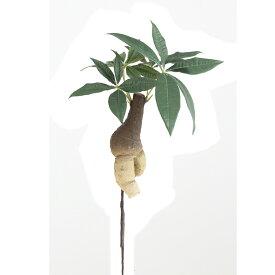 【人工観葉植物】アスカ/パキラ グリーン/A-42593-051A【01】【01】【取寄】《 造花(人工観葉植物) 人工観葉植物「は行」 パキラ 》