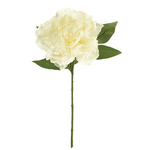 【造花】MAGIQ(東京堂)/プライマルピオニー #1 CR/WH/FM002232-001 芍薬・牡丹【01】【取寄】造花(アーティフィシャルフラワー) 造花 花材「さ行」 シャクヤク(芍薬)・ボタン(牡丹)・ピオ