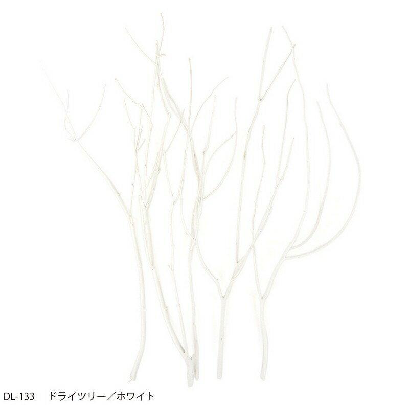 【ドライ】azi-azi/ドライツリー/ホワイト/DL-133【01】【取寄】[3個]《 ドライフラワー ドライ枝物 塗り枝・サラシ・ドライ 》