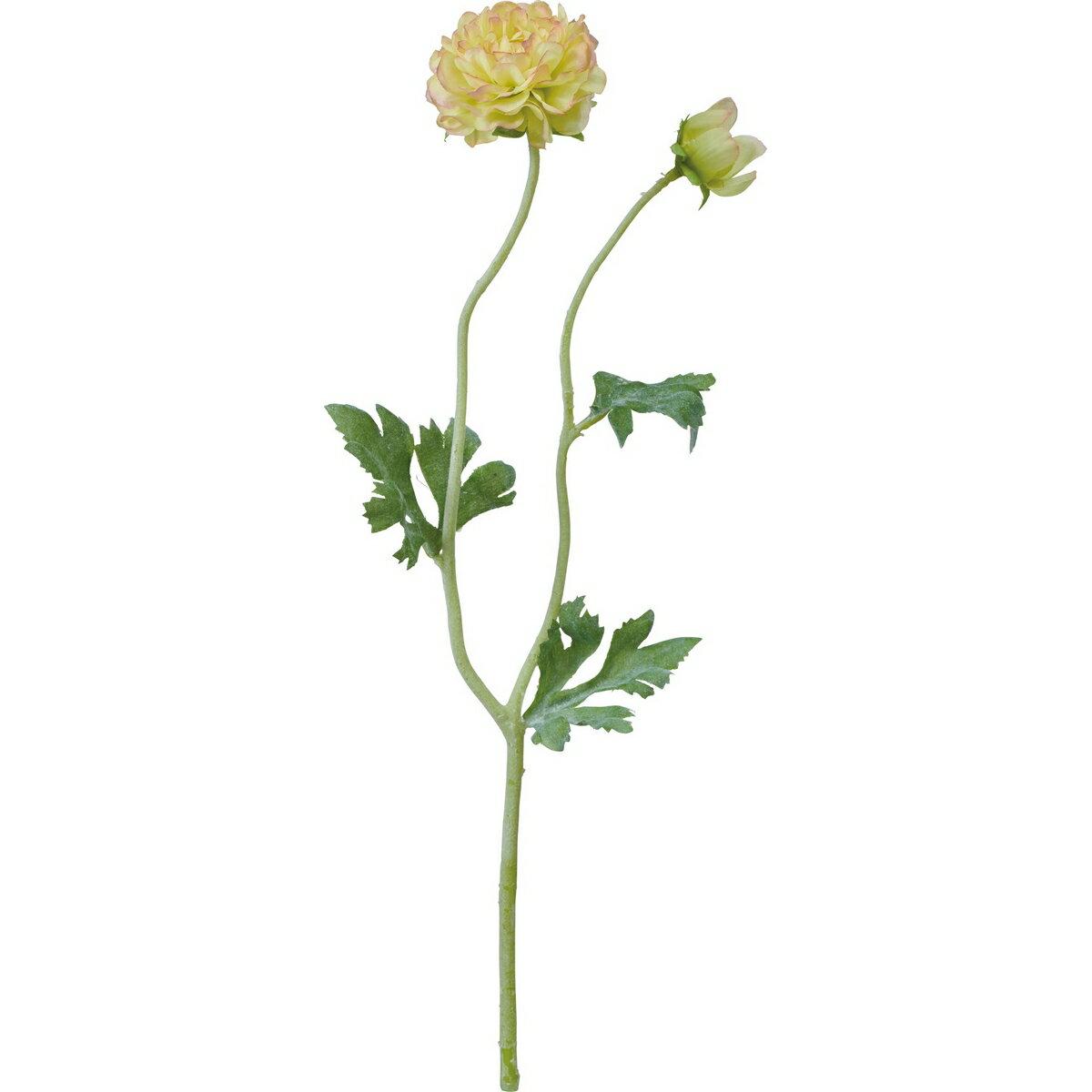 【造花】YDM/フラッフィーラナンキュラス ライトグリーン/FA7056-LGR【01】【取寄】《 造花(アーティフィシャルフラワー) 造花 花材「ら行」 ラナンキュラス 》