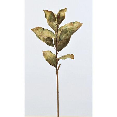【造花】アスカ/マグノリアリーフスプレー グリ−ン/A-42654-051A【01】【取寄】《 造花(アーティフィシャルフラワー) 造花 花材「ま行」 モクレン(木蓮)・マグノリア 》