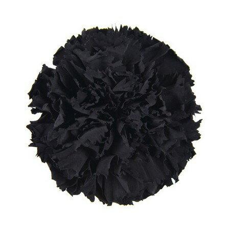 【プリザーブド】フロールエバー/ミニカーネーション ミッドナイトブラック 12輪/FL1200-26【01】【01】【取寄】《 プリザーブドフラワー プリザーブドフラワー花材 カーネーション 》
