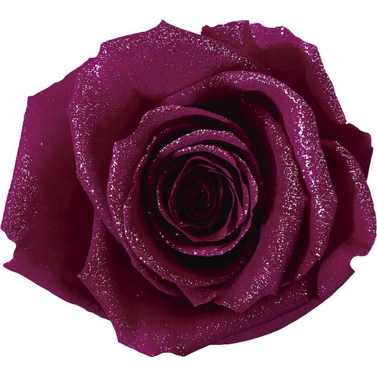 【プリザーブド】アモローサ/ダイヤモンドローズ 3輪 リッチプラム/1107-52【01】【01】【取寄】《 プリザーブドフラワー プリザーブドフラワー花材 バラ(ローズ) 》