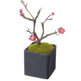 【造花】YDM/梅盆栽 ピンク/FBC-8128-P【01】【01】【取寄】《 造花(アーティフィシャルフラワー) 造花 花材「あ行」 ウメ(梅) 》