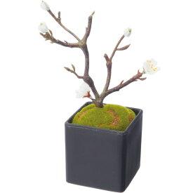 【造花】YDM/梅盆栽 ホワイト/FBC-8128-W【01】【01】【取寄】《 造花(アーティフィシャルフラワー) 造花 花材「あ行」 ウメ(梅) 》