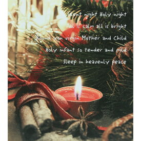 てづくり/LEDキャンバス/44-024【01】【取寄】《 店舗ディスプレイ クリスマス飾り スノードーム・卓上イルミネーション 》