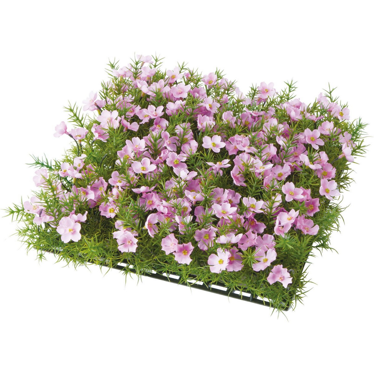 【造花】YDM/シバザクラマット ピンク/GL-MB035-P【01】【01】【取寄】《 造花(アーティフィシャルフラワー) 造花 花材「さ行」 さくら(桜) 》