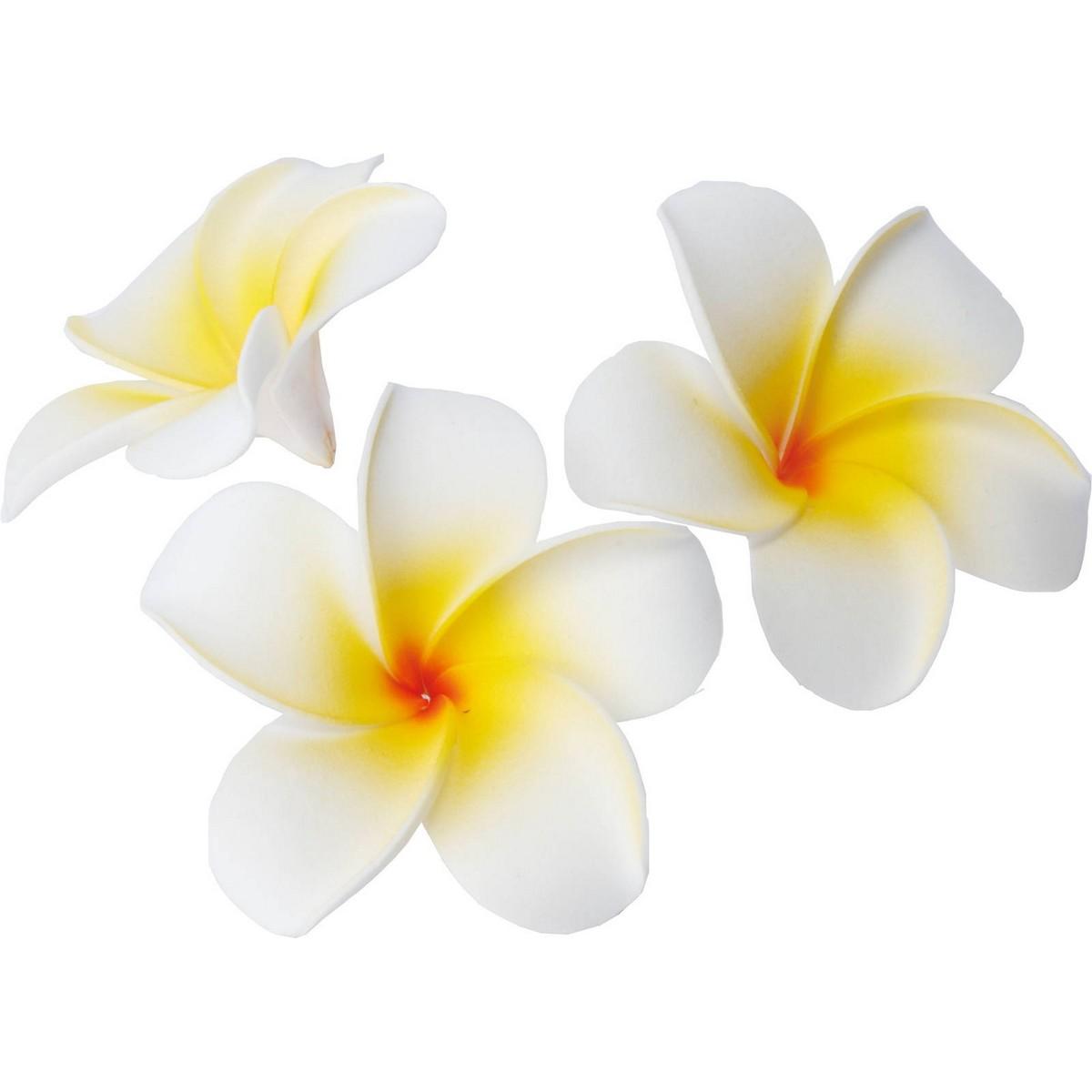 【造花】YDM/プルメリアボックス ホワイト 10個入/FA-7177-W【01】【01】【取寄】《 造花(アーティフィシャルフラワー) 造花 花材「は行」 プルメリア 》