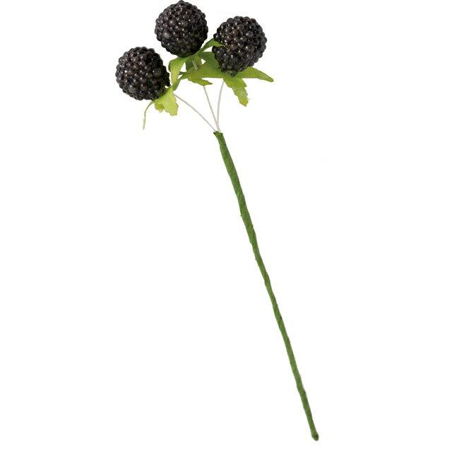 大地農園/野イチゴ・ミニ 6本 黒/23021-890【01】【取寄】《 花資材・道具 フラワーピック フルーツピック 》