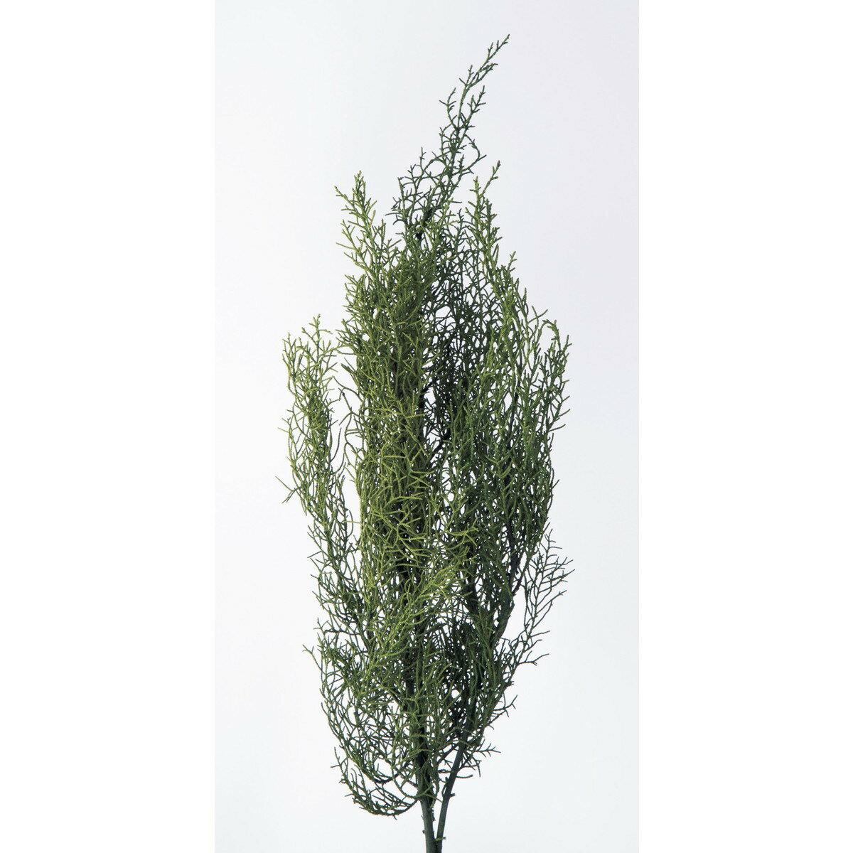 【プリザーブド】大地農園/ブルーアイス 70g入り ライトグリーン/01260-710【01】【取寄】《 プリザーブドフラワー プリザーブドグリーン 葉物 》