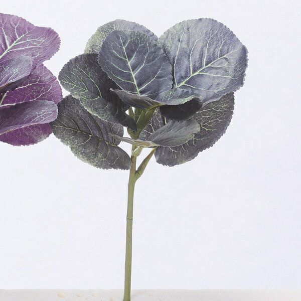 【造花】アスカ/葉ボタン NO.051D ダークグリーン/A-43053-51D【01】【取寄】《 造花(アーティフィシャルフラワー) 造花 花材「は行」 ハボタン(葉牡丹) 》
