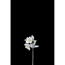 【造花】アスカ/クリスマスローズ×2 つぼみ×1/AX69300【01】【01】【取寄】《 造花(アーティフィシャルフラワー) 造花 花材「か行」 クリスマスローズ 》