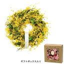 GREENHOUSE/ナチュラルリース M 帯 ミモザリース/4335-B【01】【取寄】