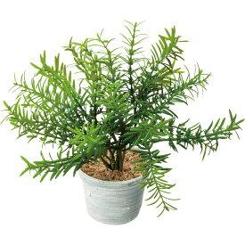 【人工観葉植物】YDM/ローズマリーポット グリーン/GLA-1494-GR【01】【取寄】 ※届日限定:7/29以降発送