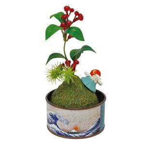 丸和貿易/浮世缶詰 盆栽 白波/400868304【01】【取寄】