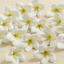 即日★【造花】アスカ/ミニプルメリア(1袋16輪入) ホワイト/A-31401-1【00】《 造花 プルメリア》