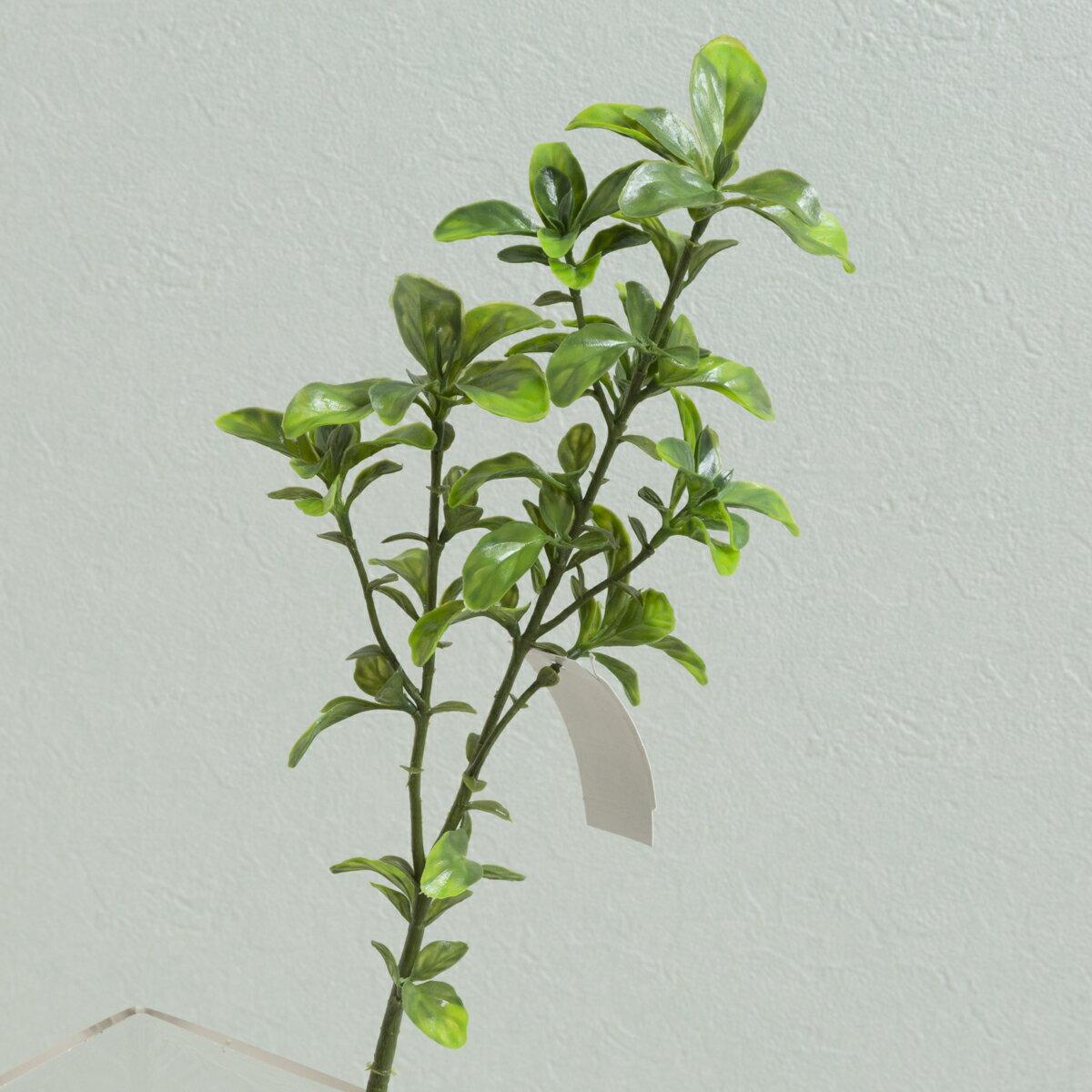 即日★【造花】YDM/ボックスウッドスプレー グリーン/FG4620-GR【00】《 造花(アーティフィシャルフラワー) 造花葉物、フェイクグリーン その他の造花葉物・フェイクグリーン 》