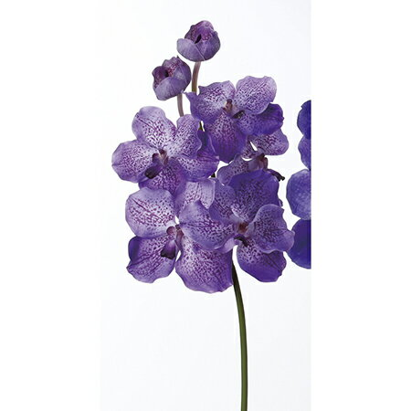 【造花】アスカ/A-32628 バンダオーキッドX7 NO.006 ラベンダ−/A-32628-006【01】【取寄】《 造花(アーティフィシャルフラワー) 造花 花材「ら行」 ラン(蘭)・オーキッド 》