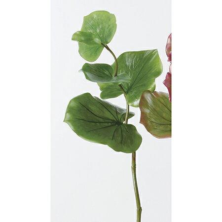 【造花】アスカ/A-41921 シーグレープ NO.051A グリ−ン/A-41921-051A【01】【取寄】《 造花(アーティフィシャルフラワー) 造花葉物、フェイクグリーン ゲイラックス 》