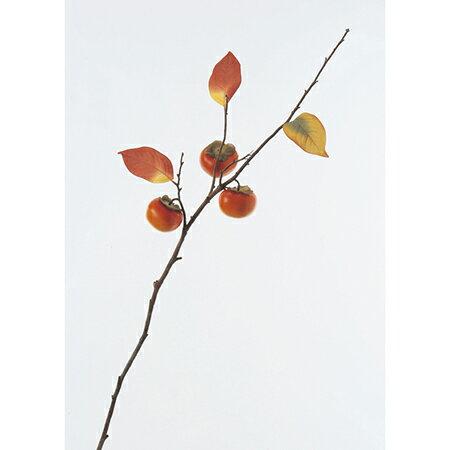 【造花】アスカ/柿(L)×3 NO.030 オレンジ/A-47547【01】【取寄】《 造花(アーティフィシャルフラワー) 造花実物、フェイクフルーツ 柿 》