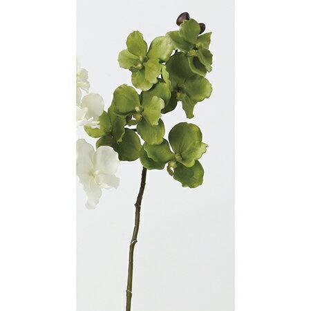 【造花】アスカ/ベルベットバンダオーキッド×6 つぼみ×3 #051A グリーン/A-32308【01】【01】【取寄】《 造花(アーティフィシャルフラワー) 造花 花材「ら行」 ラン(蘭)・オーキッド 》