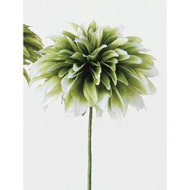 即日 【造花】アスカ/ダリアピック #051W グリ−ンホワイト/A-32633《 造花(アーティフィシャルフラワー) 造花 花材「た行」 ダリア 》