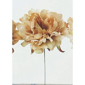 即日 【造花】アスカ/ピオニーピック ソフトベージュ/A-31454-8A造花(アーティフィシャルフラワー) 造花 花材「さ行」 シャクヤク(芍薬)・ボタン(牡丹)・ピオニー 手作り 材料